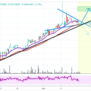 Zilliqa [ZIL]Price Analysis: Zilliqa Still Following Steady Uptrend, Trading In A Triangle Above Support