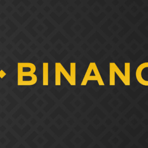 Binance Smart Chain Unique Addresses Nears 250K in Less Than 2 Months