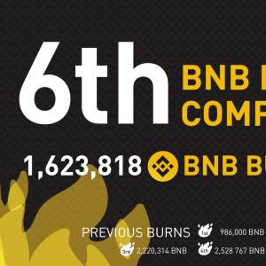 CZ Focusing On BUIDL, Binance Completes Its 6th Edition of BNB Coin Burn