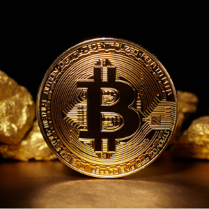 'The Main Use For Bitcoin Today is as Digital Gold': Claims Economists