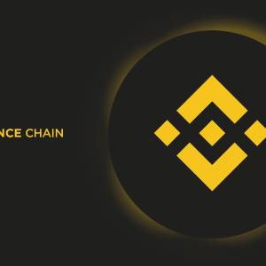 Binance Unveils Launchpad Token Sale, Launch Pool Farming for DeFi Project Alpha