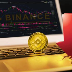 BNB Hits A 90-Day Low Despite the Massive Developments at Binance