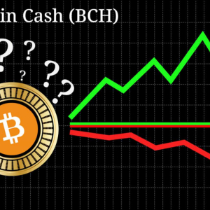 Is Bitcoin Cash [BCH] Rallying Because of their Footprint in South Korea, New Developer Fund Proposal?