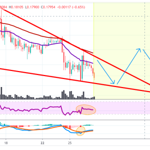 XRPUSD Price analysis: XRP Prices Continue To Be In Downtrend With More Possible Declines