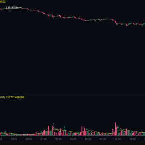 Binance CEO Responds To Chainlink [LINK] Futures Crashing Over 99.9%