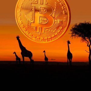 Bitcoin [BTC] P2P Volume in Africa and S. America Reaching New ATHs in 2020, Report