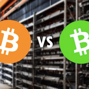 Bitcoin Cash (BCH) Isn't Dead And Is Cheaper to Transact On Than Bitcoin