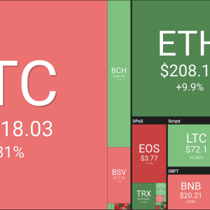 Price Analysis: Top Five Weekly Performer Coin in the Crypto Market