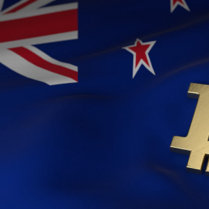 New Zealand Government Approves Crypto Salaries for Employees