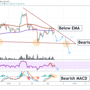 Zilliqa Price Analysis: ZILUSD Trading Below Trendline, More Downward Action Expected For ZIL