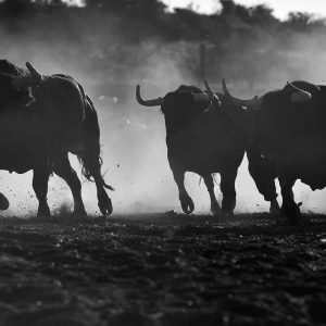 Are Bitcoin [BTC] and Stock Market Bears in Denial? Bulls Take Control at these Prices