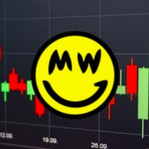 "Crypto Controversy: New Privacy Oriented Cryptocurrency ""Grin"" Accused for Wrong Doing"