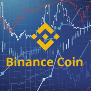 Binance Coin [BNB] Spikes by 6%, Becomes Top Gainer in 24-hour Cycle