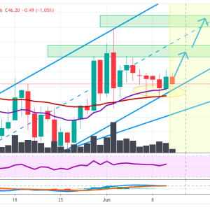 LTCUSD Price Analysis: Litecoin Eyeing A Breakout, Moving In Rising Channel Above EMA