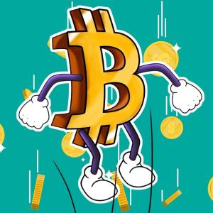 New to crypto? Buy only the original Bitcoin BTC, do not fall prey to shitcoins