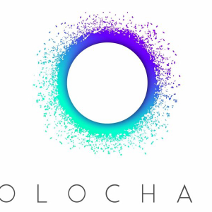 What is the Holochain? Holo Token Explained.