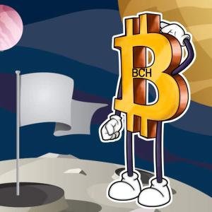 Ripple [XRPUSD] Bullish breakout | Bitcoin Cash [BCHUSD] could soon drop more than 8%