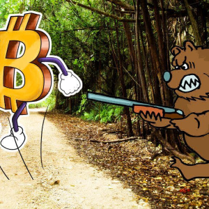 Cryptocurrency Market Analysis: Is a bear market foreseen?
