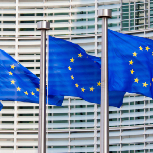 European Union rejects the petition to raise funds for crypto crime victims.