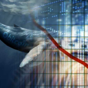 Bitcoin suffers price drop as whales generate high tension in the crypto market – Bitcoin News