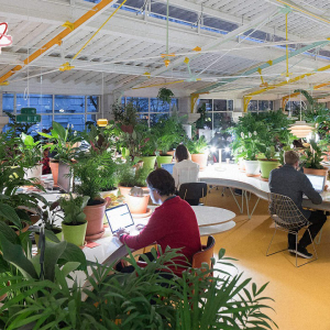 BiggBang Coworking Chandigarh – Why is it the best coworking space for startups and blockchain companies in India?