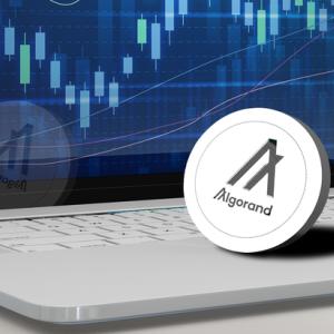 Algorand Recap – $ALGO is Crypto's 2020 Hidden Gem