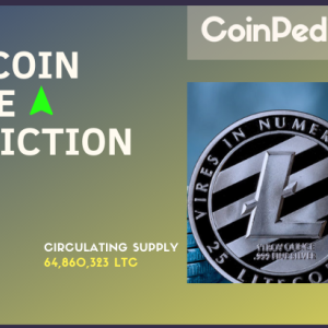 Litecoin Price Prediction 2020 – How High Will LTC Price Reach?