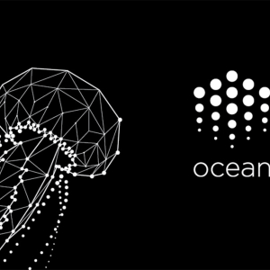 Ocean Protocol to Reward Developers with 3.4 Million OCEANs to BUIDL a New Data Economy via Competition