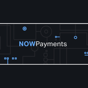NOWPayments Review: Can It Beat the Competition?