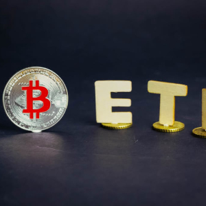 Bitwise Set to File Another Application for Bitcoin ETF Following SEC Rejection