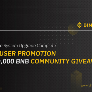 Binance Restarts Services Pushing BNB Price to 2019 All-Time High