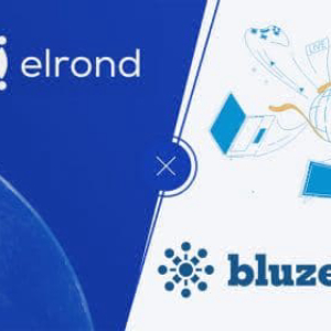 Bluzelle and Elrond Teams Up to Provide DApps Built on Elrond Mainnet