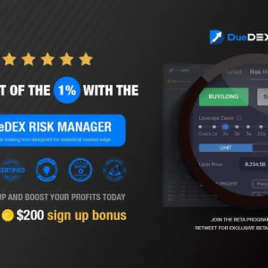 Gain a Statistical Advantage Whilst Crypto Trading With the New DueDEX Risk Manager