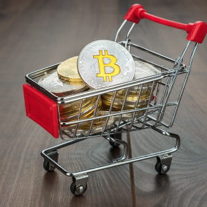 Bitcoin Price Is Around $6,300 as Toilet Paper Token Price Rose by 1,123.97%