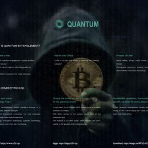 Quantum Entanglement: Mysterious Blockchain Project From Darknet, Which Is About To Change The World Pattern