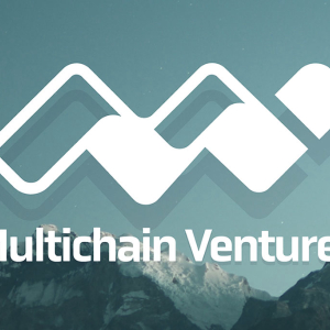 Everything You Need to Know about Multichain's Service Portfolio