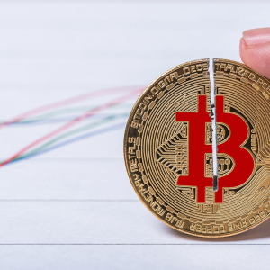 Whenever Bitcoin Halving Is Mentioned, BTC Price Rises?