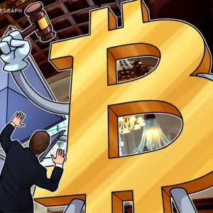 Joe Lubin: Ether and BTC Didn't Face Regulations Unlike New Projects