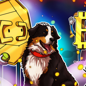 Bitcoin Rewards App Lolli Partners With Major US Pet Store Chain