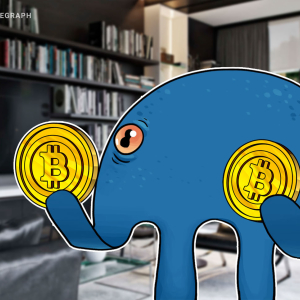 Boom! Kraken Predicts Imminent Bitcoin Price Rally of Up to 200%
