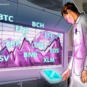 Price Analysis 22/11: BTC, ETH, XRP, BCH, LTC, EOS, BNB, BSV, XLM, TRX
