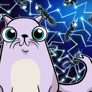 Coincheck exchange to help CryptoKitties go mainstream in Japan