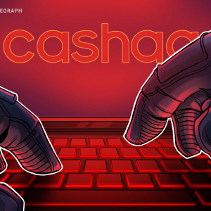 The Cashaa Hack: Investigators Stay Silent as Inside Job Rumors Emerge