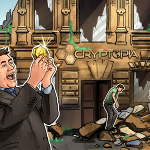 Cryptopia Liquidator Determining Pooled Wallet Crypto Ownership