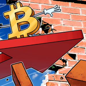Bitcoin Erases February's Gains, BTC Price Sinks Below $8,700