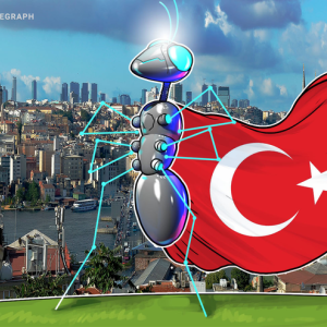 Turkey Announces Plans for a National Blockchain Infrastructure