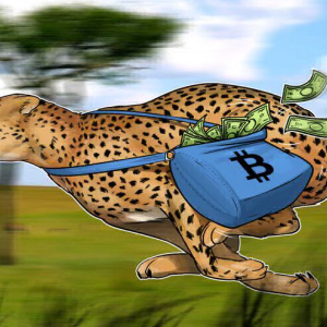 Report: Bitcoin Transaction Fees Fall to 2014 Levels