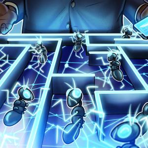 Polkadot lanzó una red de pruebas para los protocolos de comunicación entre shards