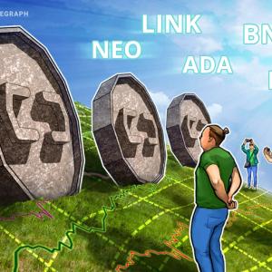 Las mejores 5 criptos de esta semana: NEO, LINK, ADA, BNB, LEO