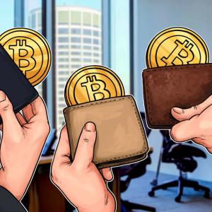 """""""Ballena"""" de Bitcoin revela algunos de los 'secretos' del trading"""